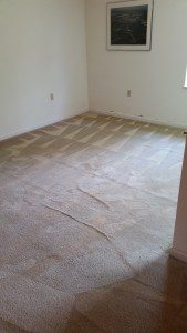 carpet after restretching and cleaning