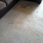 carpet before being cleaned