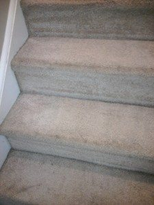 carpeted stairs after being cleaned