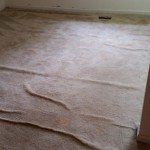 carpet before restretching and cleaning